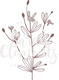 Sarah Clements Photography